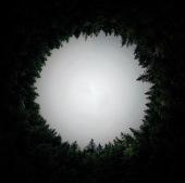 circular-3002865_1920